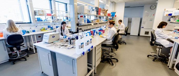 Kinghorn-Lab-for-tkcc